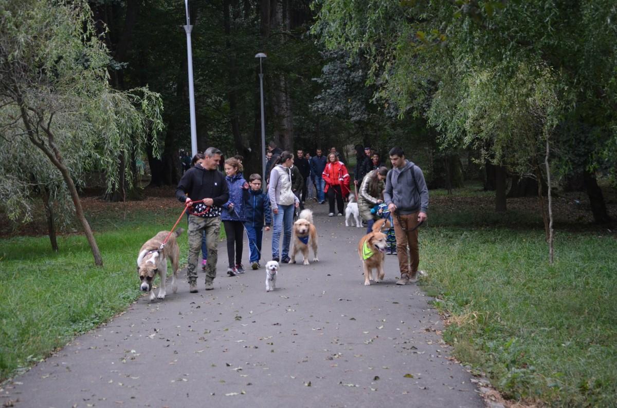 Cea mai amplă plimbare cu animalul de companie din Sibiu se lasă cu premii