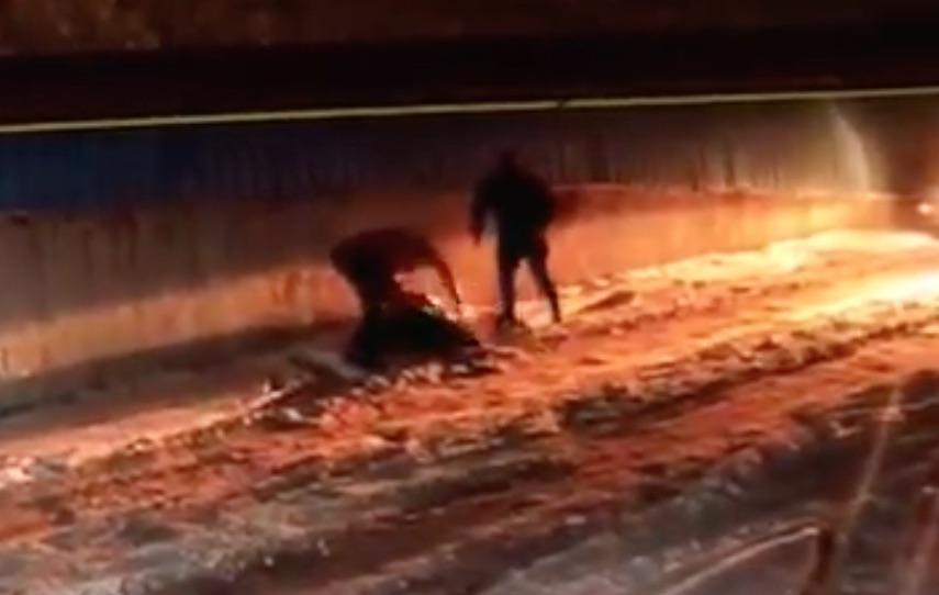 Prima sentință în dosarul crimei de la Mediaș: pedepsele luate de cei trei inculpați