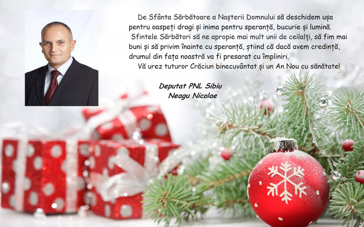 Mesaj de sărbători, deputat Nicolae Neagu (CP)