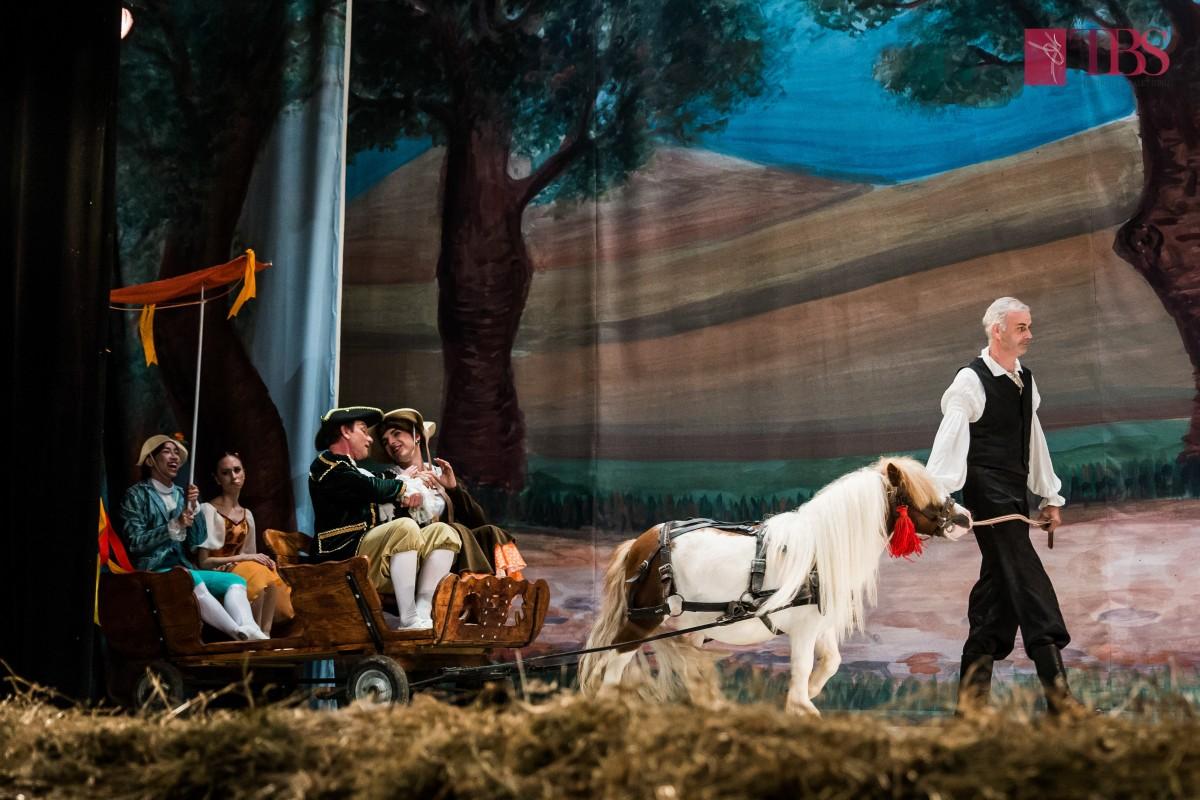 """Spectacolul """"La fille mal gardée"""" al Teatrului de Balet Sibiu reprogramat, cu doar o treime din locuri scoase la vânzare"""