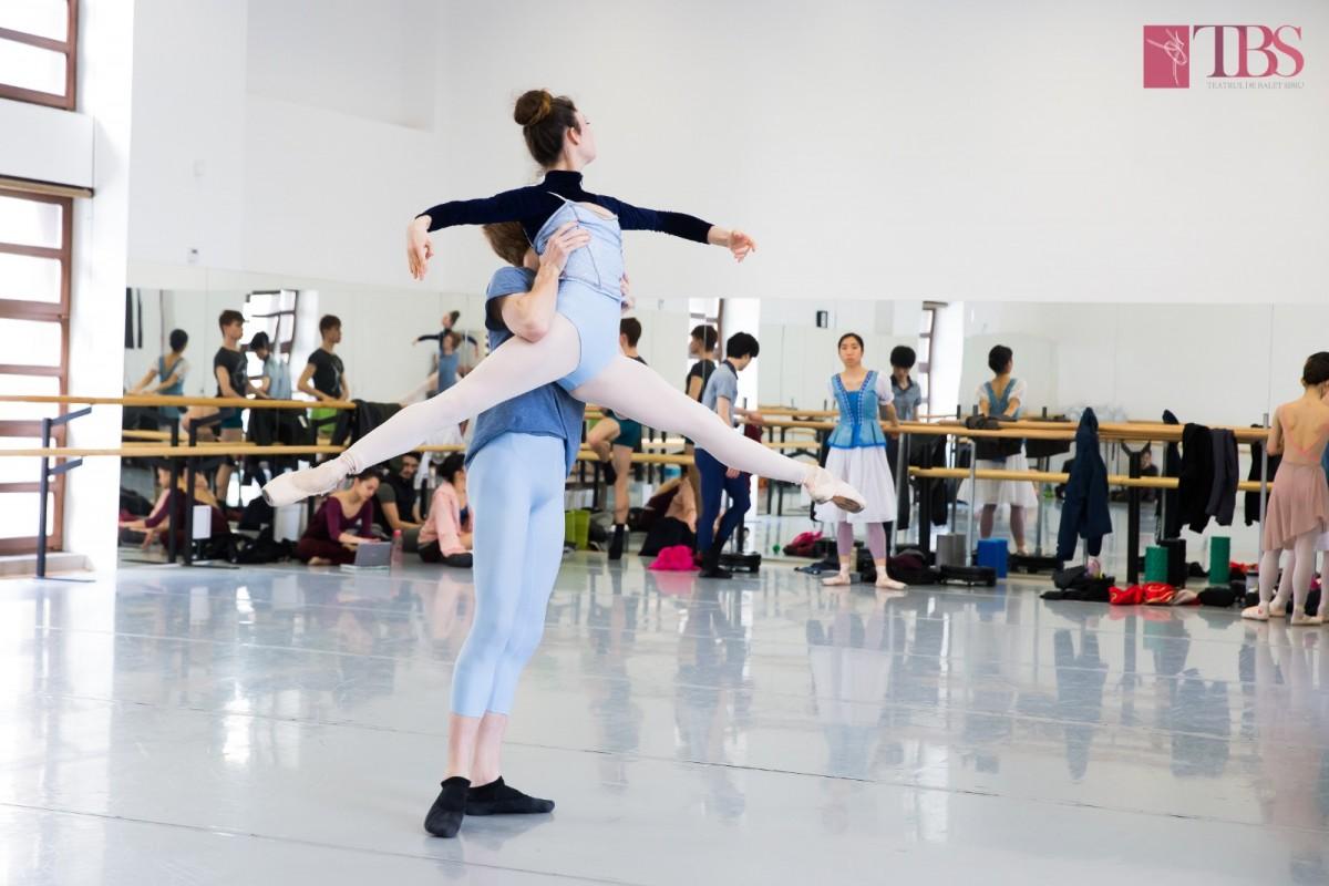 """Teatrul de Balet Sibiu se întoarce """"acasă"""". Cinci premiere vor fi dansate la Ion Besoiu"""