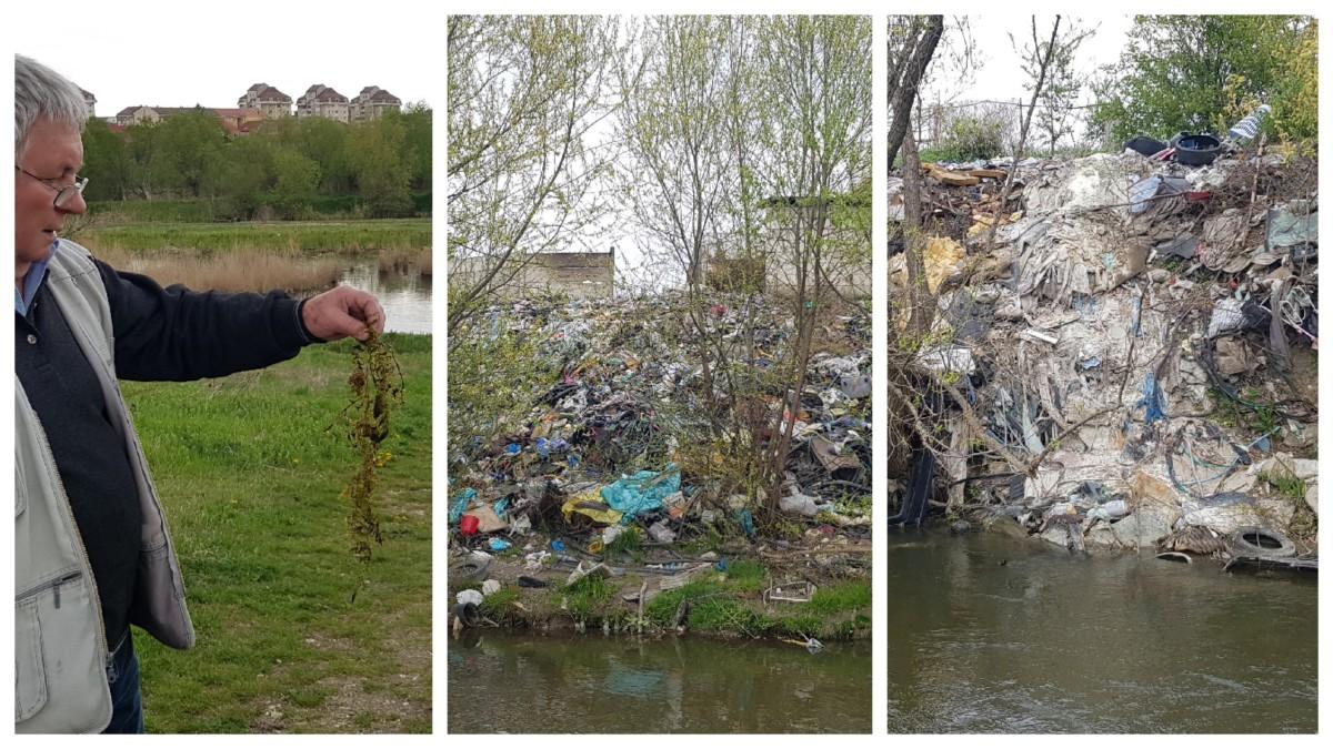 Foto și video. Cibinul - de la o oază precum Delta Dunării, la groapa de gunoi a orașului
