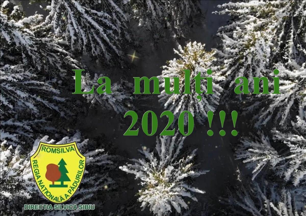 Mesajul de Crăciun al Direcției Silvice Sibiu