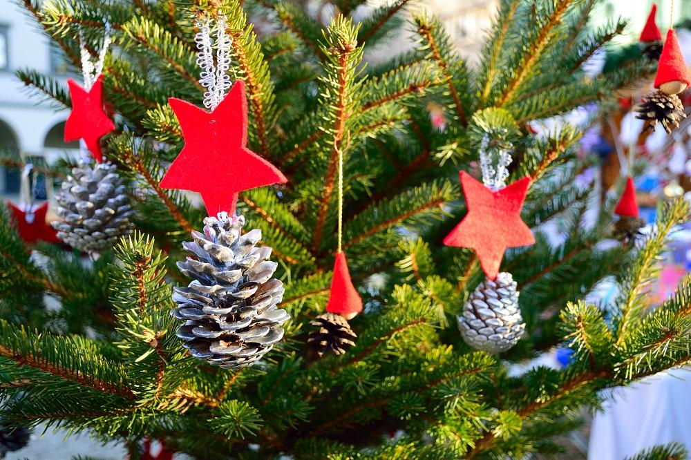 Mesajul de Crăciun al Primăriei Cârțișoara