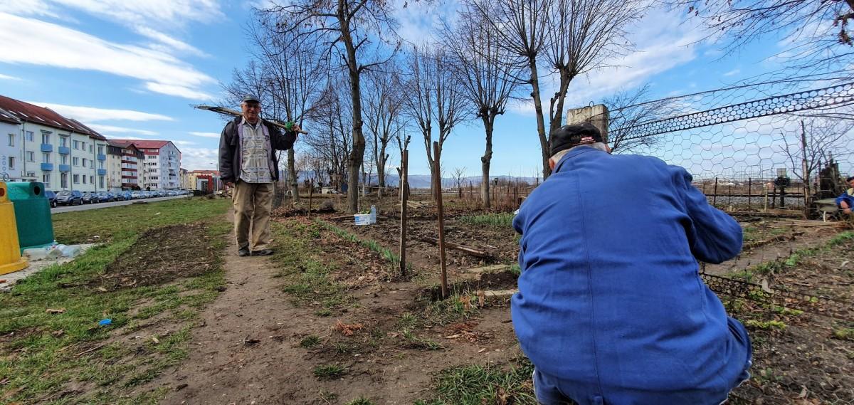 După 40 de ani: grădinile din Ștrand sunt desființate. Pentru a face loc bicicletelor
