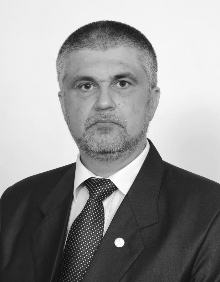 IN MEMORIAM Profesorul universitar doctor inginer Lucian Vințan