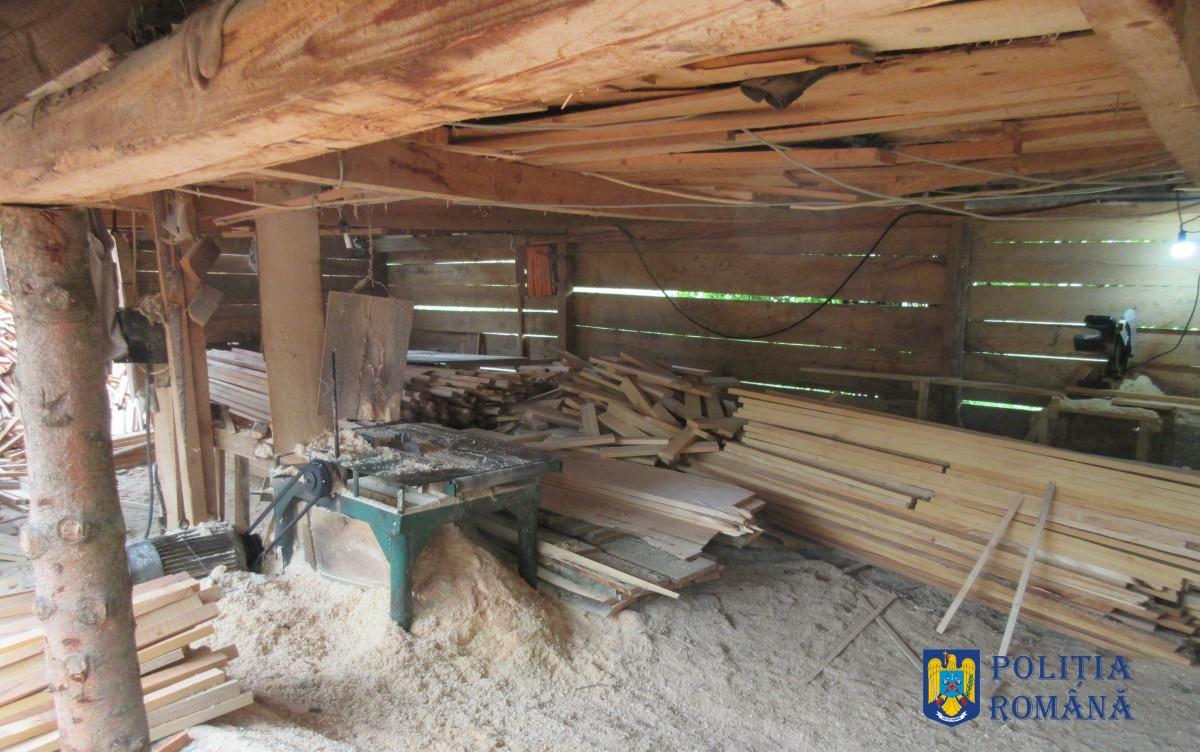 Un depozit din Gura Râului nu poate justifica, în fața Poliției, lemn de 11.000 de lei