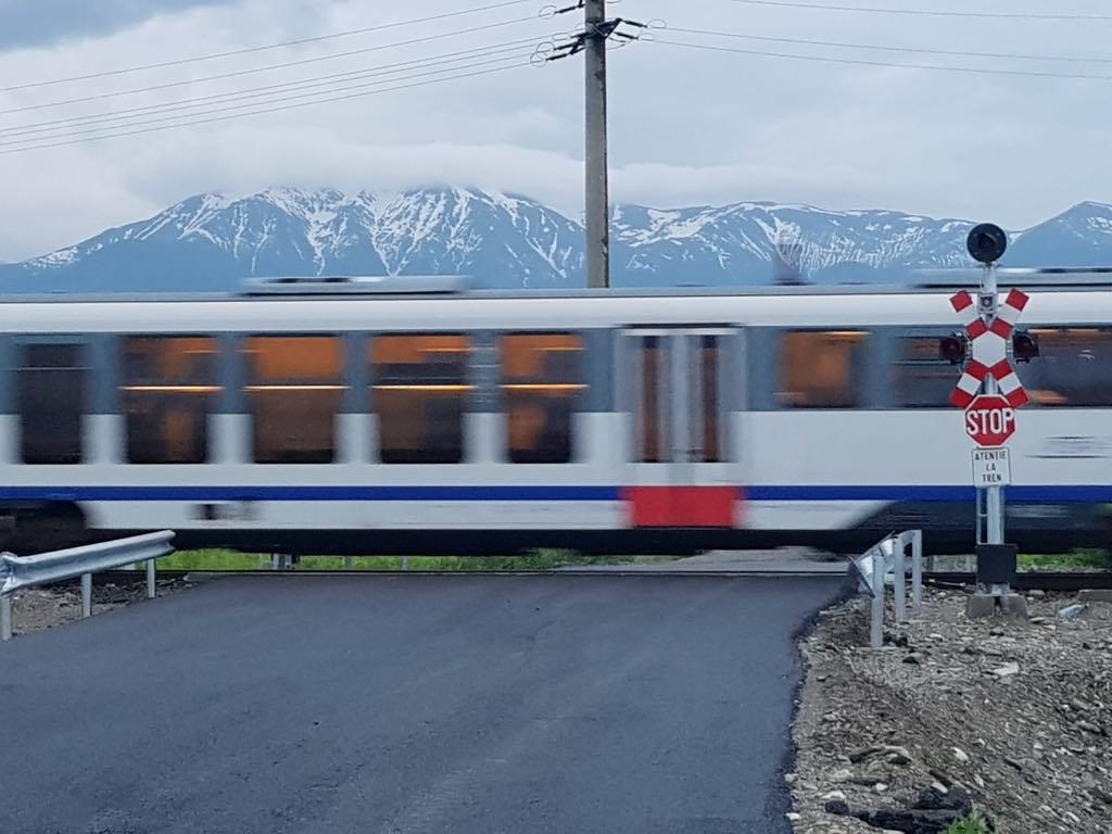 Trenul personal Sibiu - București a lovit patru cai și este blocat