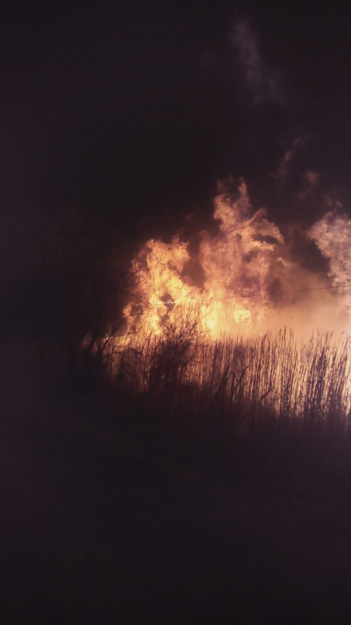 VIDEO/Incendiu puternic de vegetație. Au ars aproximativ șase hectare