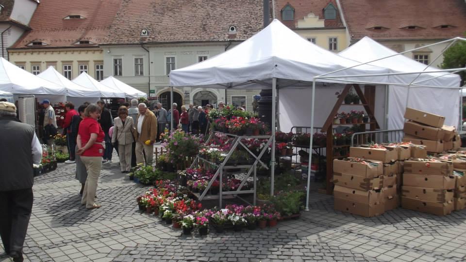 Festivalul Grădinilor revine în centrul orașului