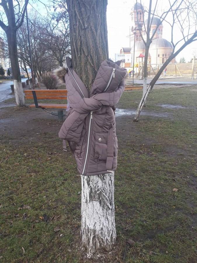 Ideea bulgarilor a ajuns și la Sibiu: copaci îmbrăcați cu haine pentru oamenii sărmani