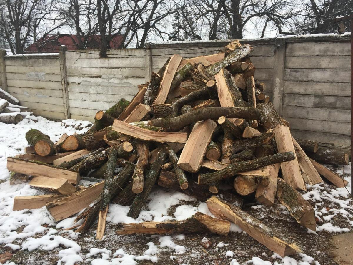 Scutul Pădurii. 5.000 de lei amendă pentru3 m3 de material lemnos fără documente legale