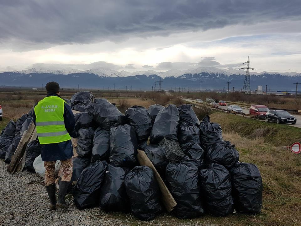 Acțiuni de ecologizare. Curățenie pe malurile Oltului și în Parcul Subarini