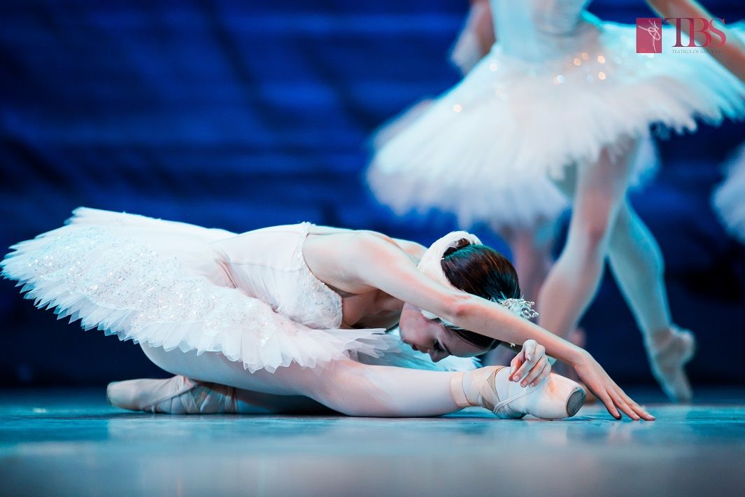 Redal Expo, noua locație de spectacole pentru Teatrul de Balet sibian