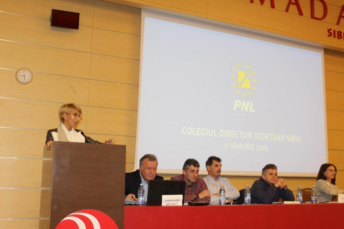 Planul PNL pentru 2019: Câștigăm europarlamentarele și Iohannis, un nou mandat de președinte