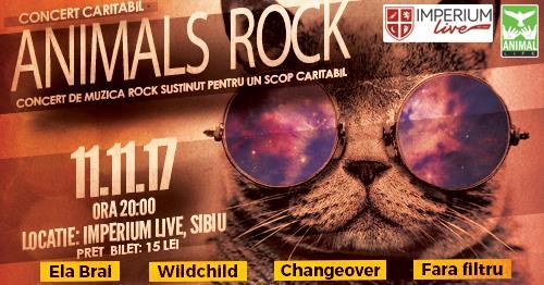 Eveniment caritabil: Concert rock pentru pisicile abandonate