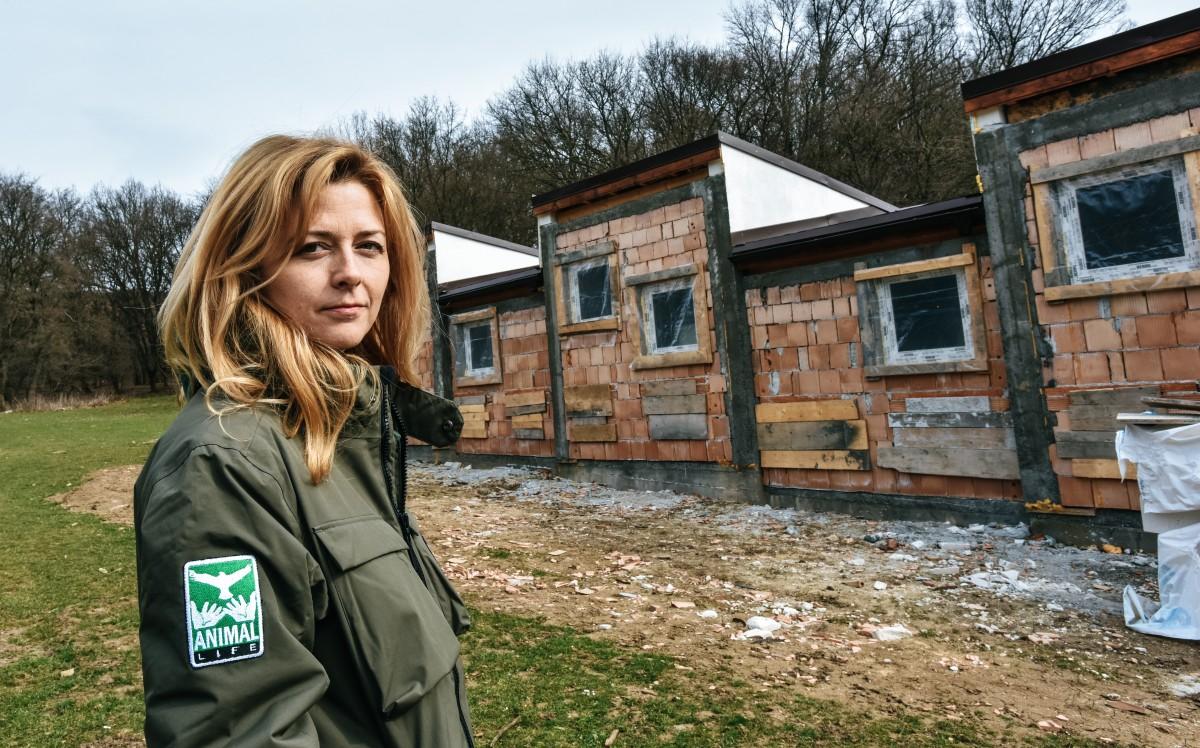 TSTV Andreea Roseti, Animal Life: S-a schimbat mentalitatea sibienilor