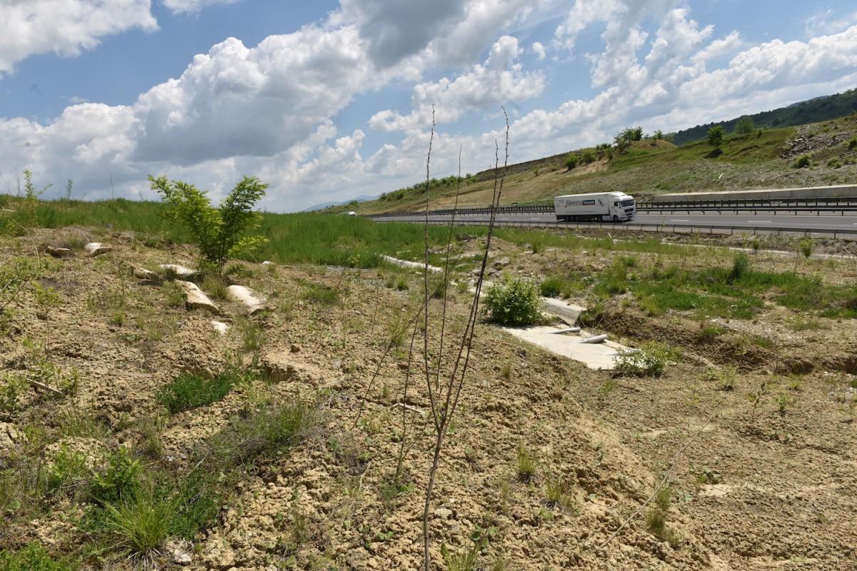 """Toaletele autostrăzii """"de nisip"""" a Sibiului, scoase la licitație: 1,13 milioane de lei, bugetul alocat"""