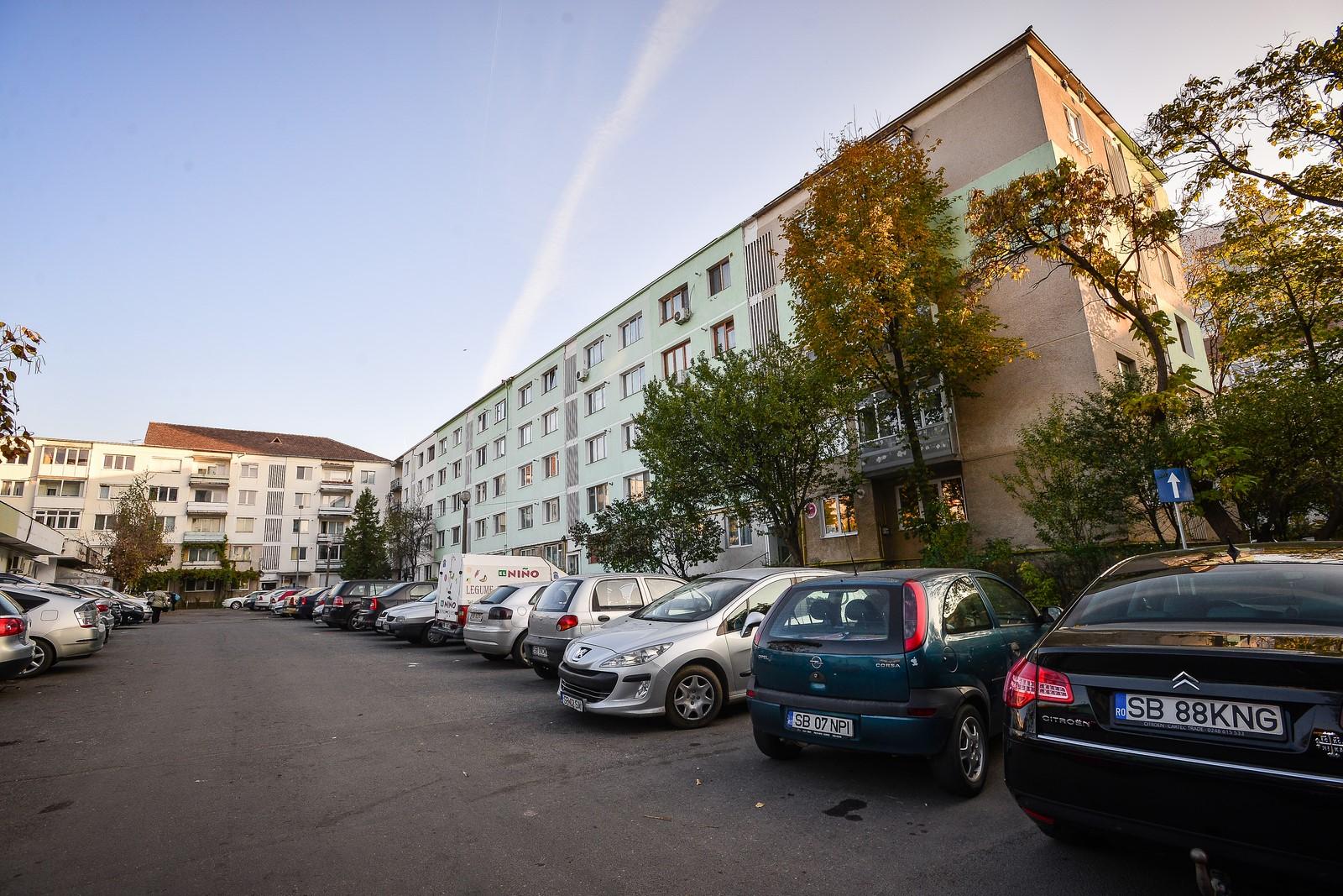 Vreți un Sibiu mai verde? Cereți gard viu Primăriei!