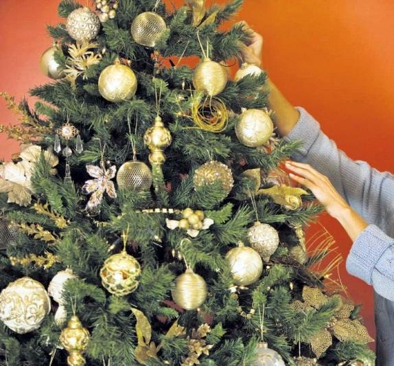 Un tânăr împodobește bradul de Crăciun în locul sibienilor. Contra cost