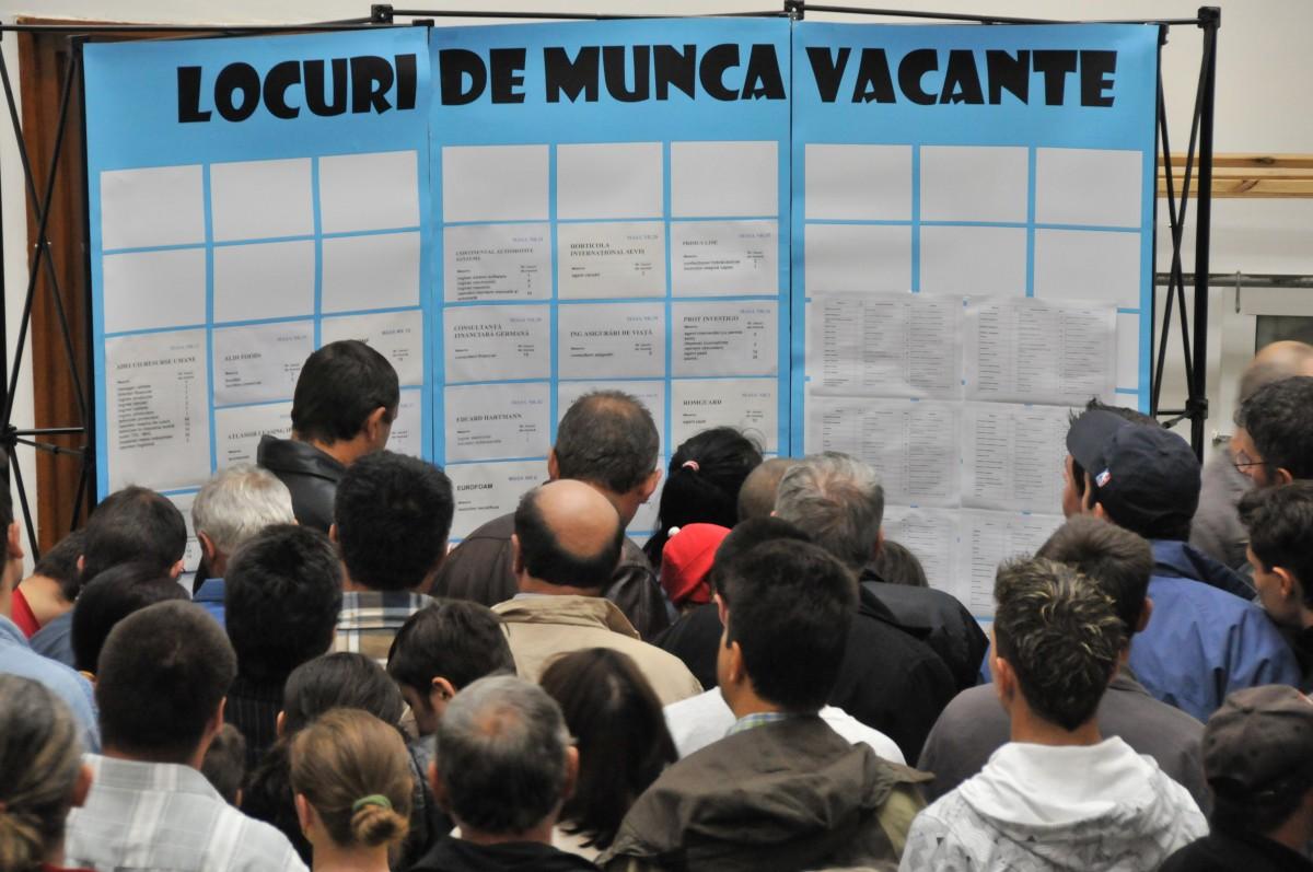 1.162 de locuri de muncă disponibile pentru necalificați la Sibiu