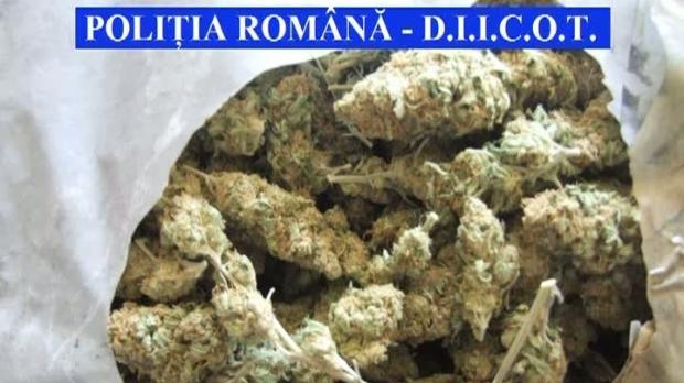 Descinderi DIICOT la o rețea de trafic de droguri. Substanțele ajungeau și la Sibiu