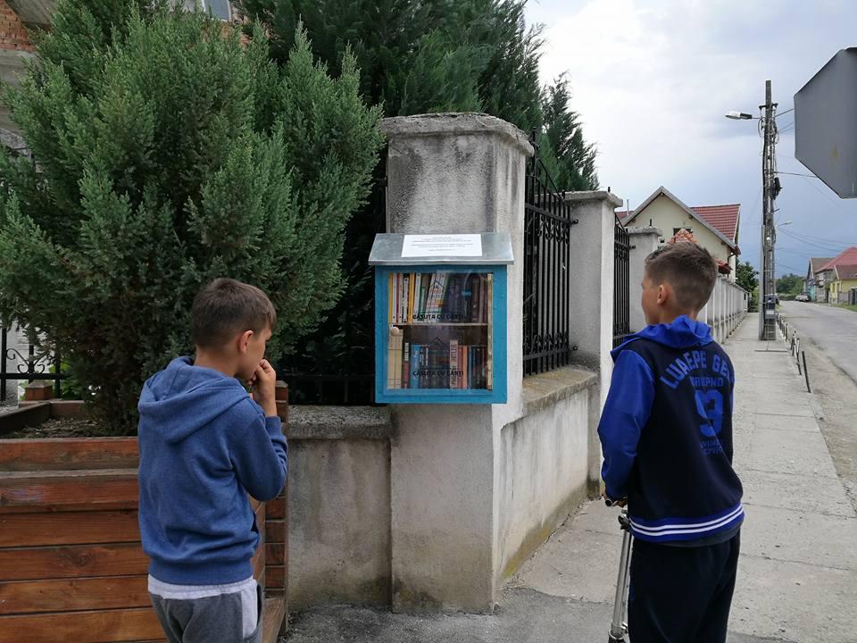 Căsuța cu cărți: proiectul care aduce câte o mică bibliotecă la colț de stradă