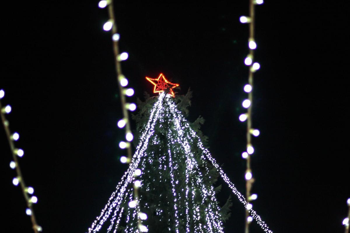 Seară de sărbătoare la Cisnădie. S-a aprins luminatul festiv   FOTO VIDEO