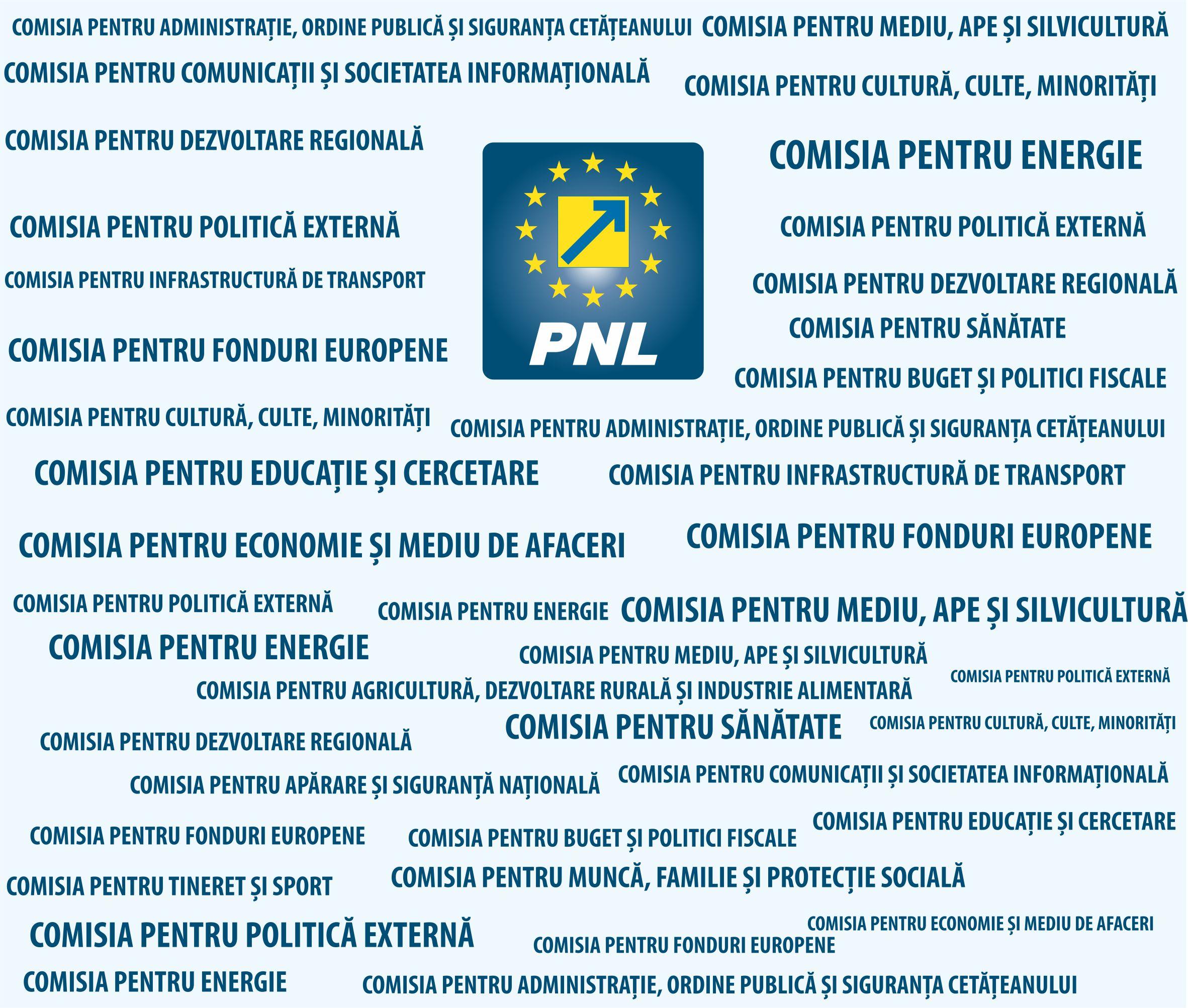 PNL Sibiu se laudă că are 120 de specialiști&;