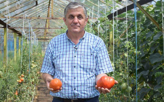 """""""Părintele"""" a22 de soiuri noi de legumevine la Sibiu pentru a oferi sfaturi gratuite"""
