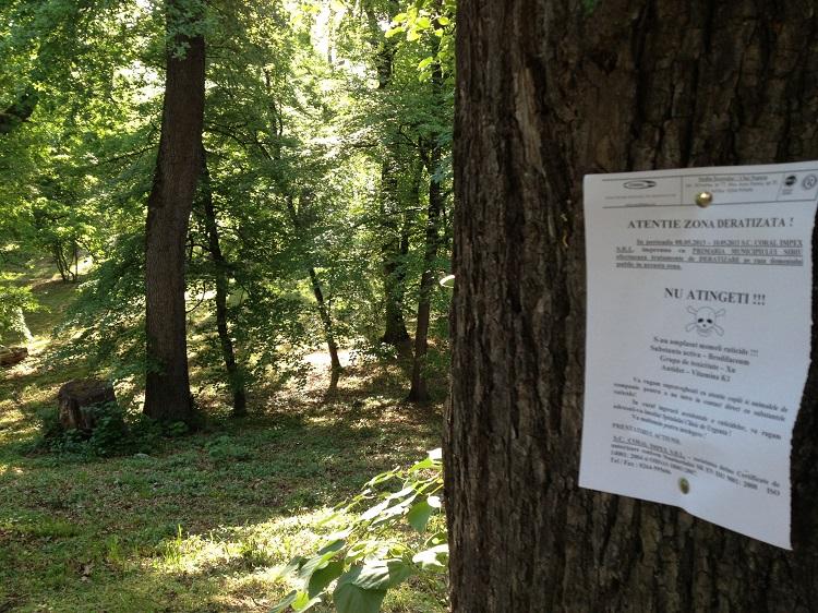 Dezinsecție în Sibiu împotriva căpușelor
