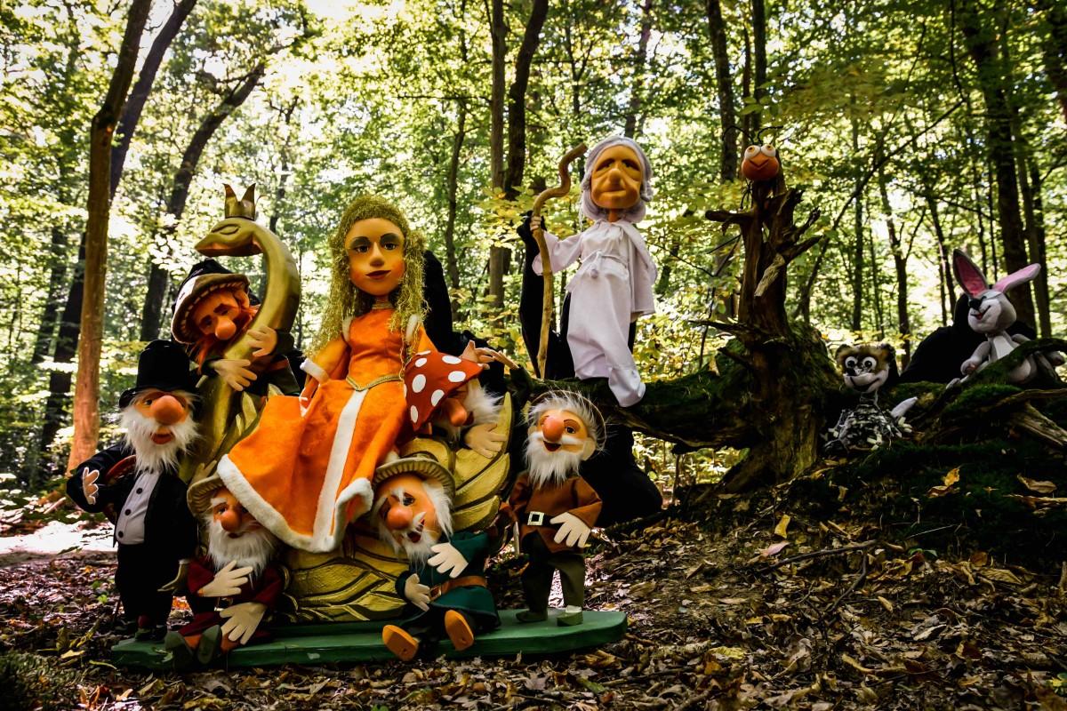Lizuca, Patrocle, Scufița Roșie și Gulliver, la final de an, pe scena de la Gong