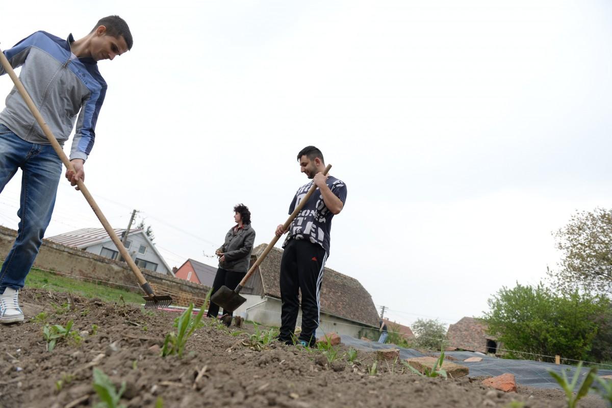 """Un nou program în școlile din Sibiu - grădinăritul. """"La țară nu se mai ocupă prea mult de pământ"""""""