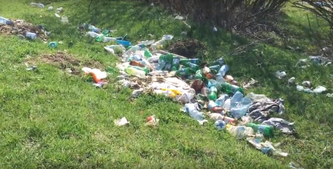 VIDEO-Spațiu verde transformat în groapă de gunoi. Garda de mediu încă n-a ajuns pe aici