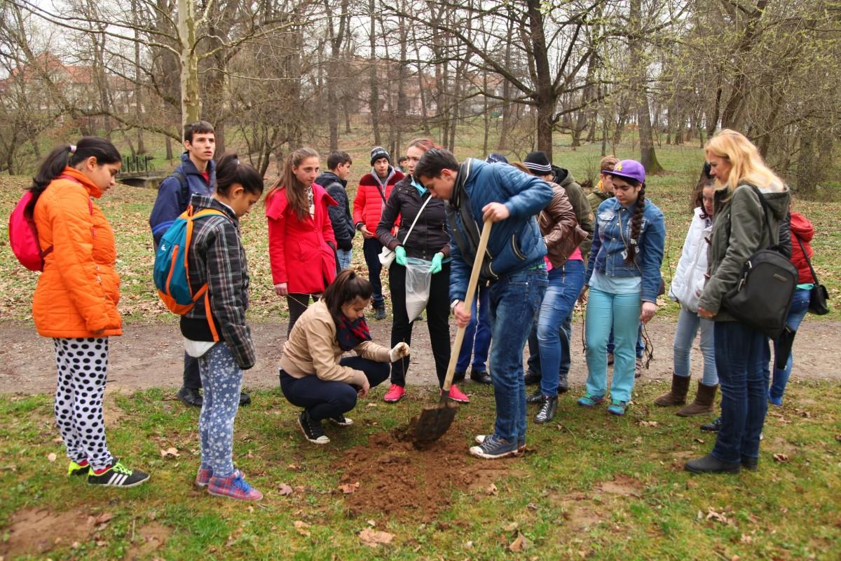 """""""Vrem să înfrumusețăm parcul"""". Elevii de la """"Terezianum"""" au ieșit să planteze copaci în Subarini"""