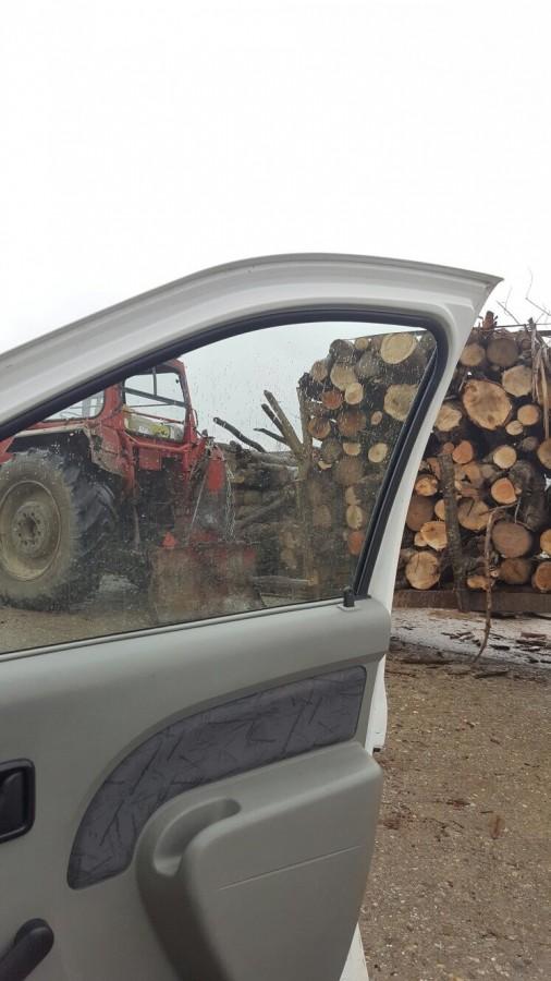 3.000 de lei amendă pentru un transport ilegal de 22m3 de lemn