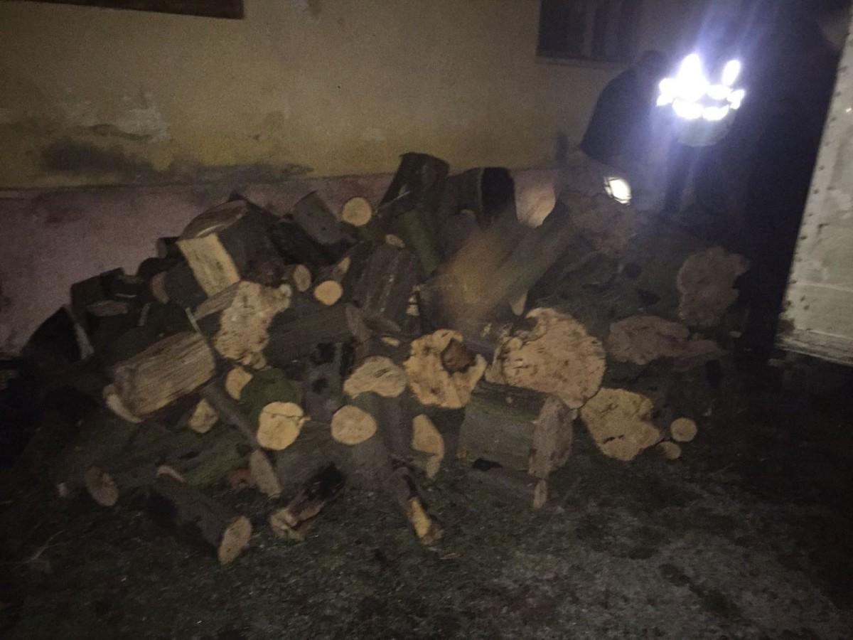 Amendă de 10.000 de lei pentru un transport ilegal de lemne