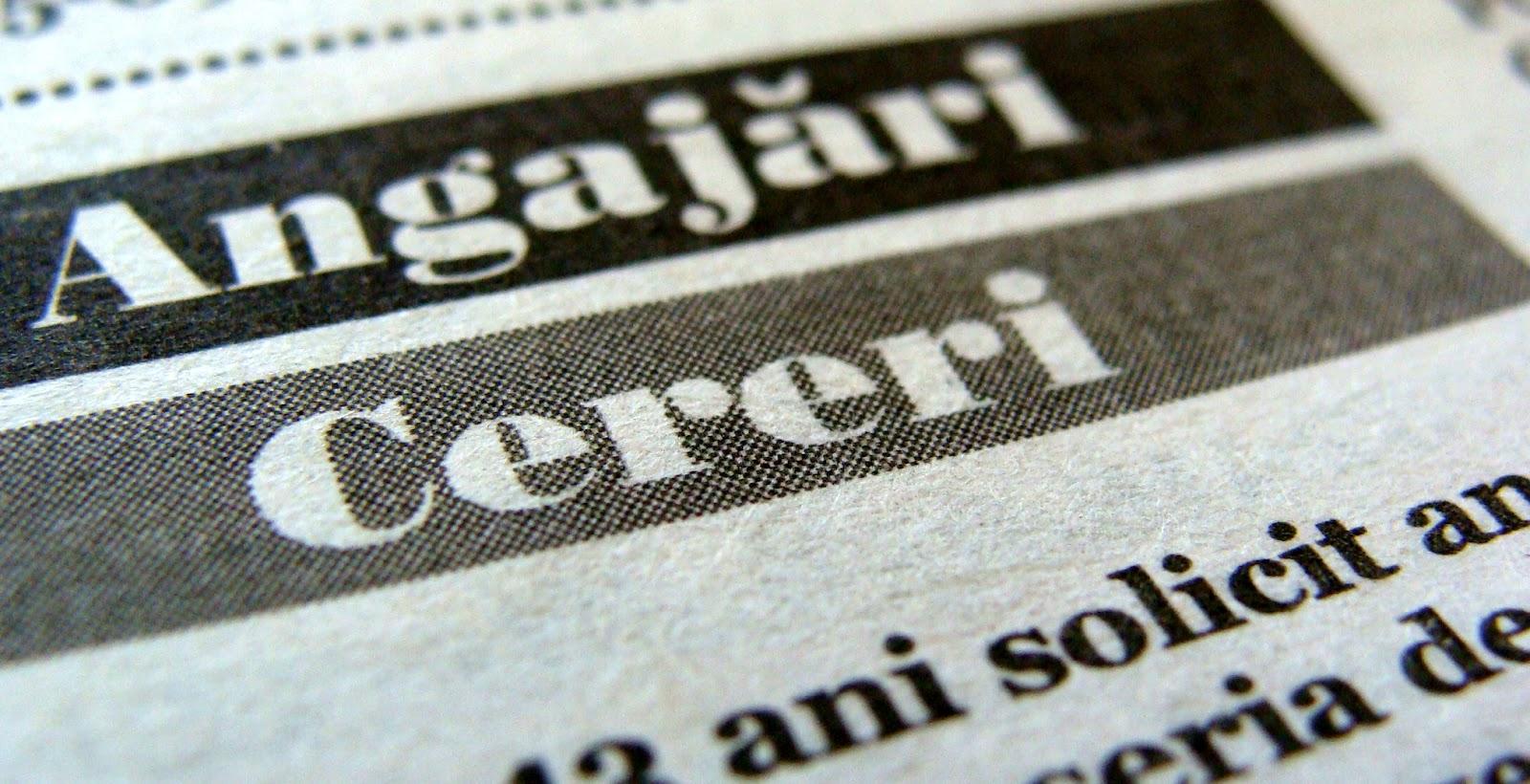 Oferta bogată pe piața muncii: 1103 job-uri la Sibiu și încă 400 locuri de muncă în Europa