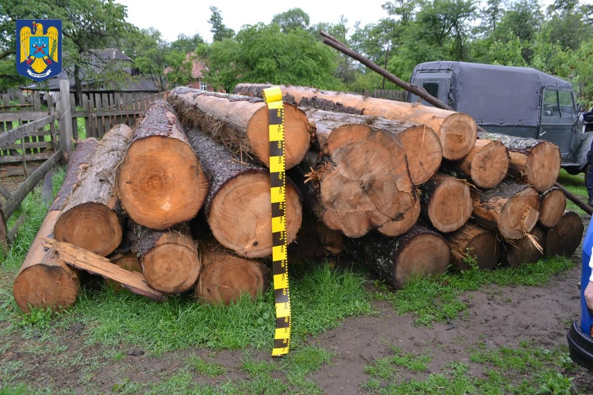 Cioloș: Tăierile ilegale de pădure sunt o problemă de siguranță națională