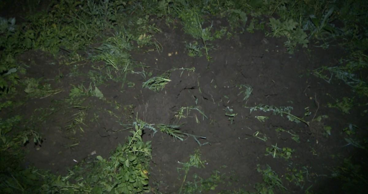 VIDEO Un proiectil a aterizat într-o grădină în Merghindeal. Militarii susțin că nu s-a produs o explozie la impactul cu solul