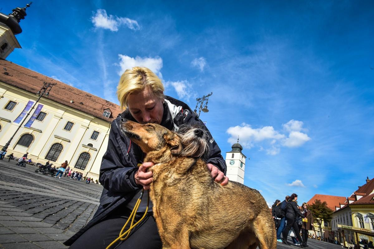 Interviu cu olandeza care a venit pe jos până la Sibiu pentru câini: Mulți olandezi cred că românii sunt barbari