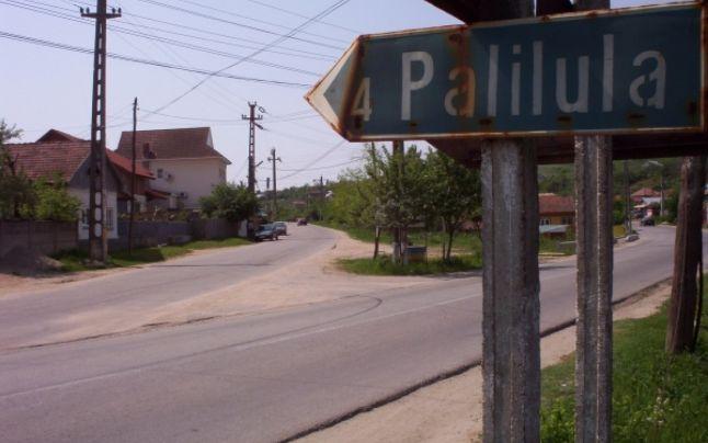 Undeva la Palilula: Un tânăr a împușcat mortal doi oameni, tată și fiu, a rănit grav alți doi și s-a sinucis