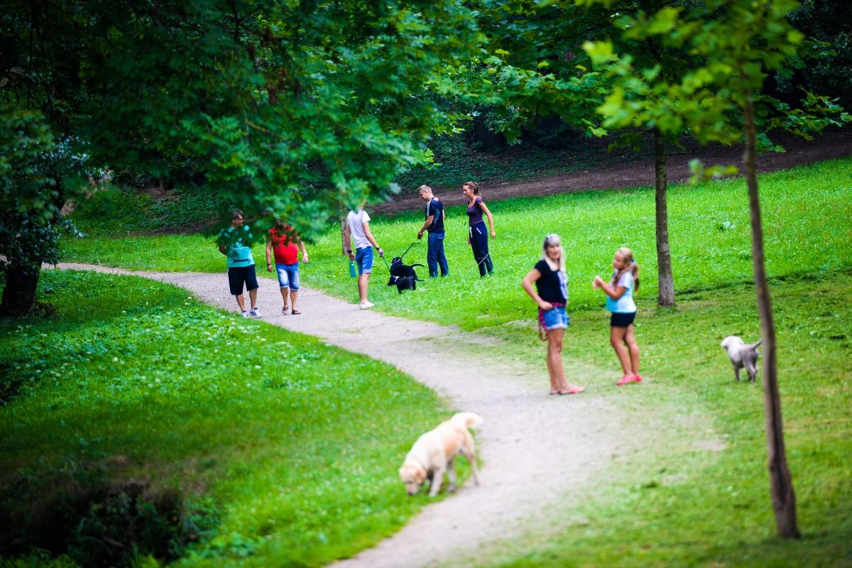 Cea mai mare plimbare cu animalele de companie, la Sibiu
