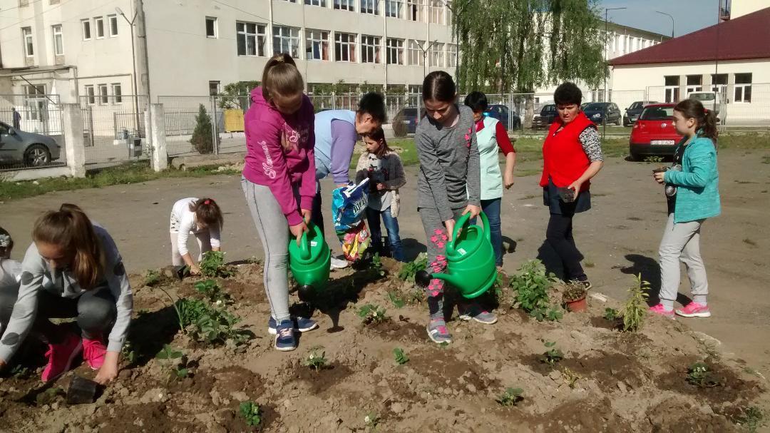 Școală cu sapa în mână: peste 650 de elevi, la plantat de pomi și legume
