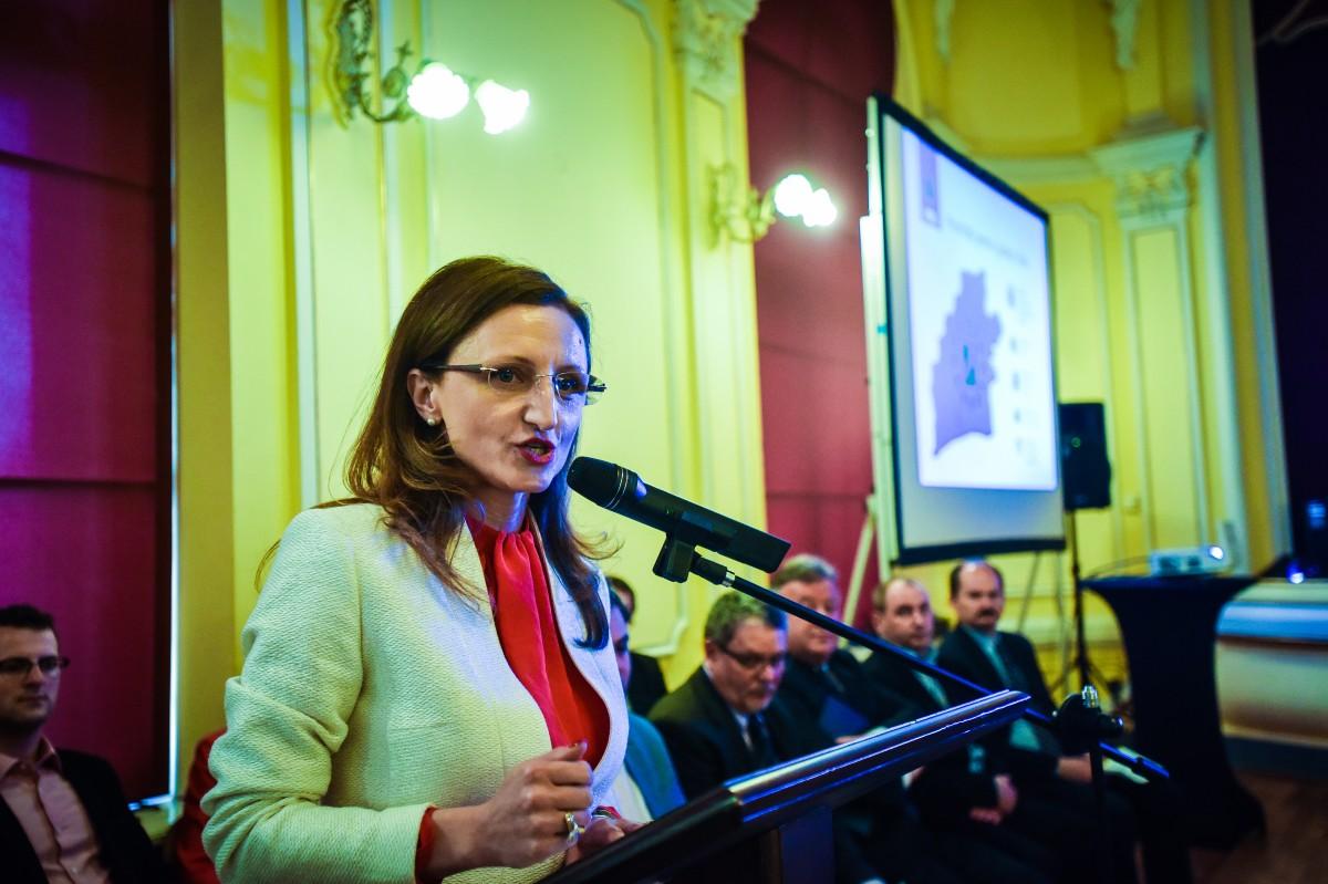 Daniela Cîmpean:Vrem un Consiliu Județean care să fie mai întâi activ în domenii care produc venituri