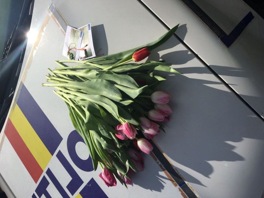 Polițiștii sibieni au oferit flori în trafic, dar și la Maternitate, de 8 martie
