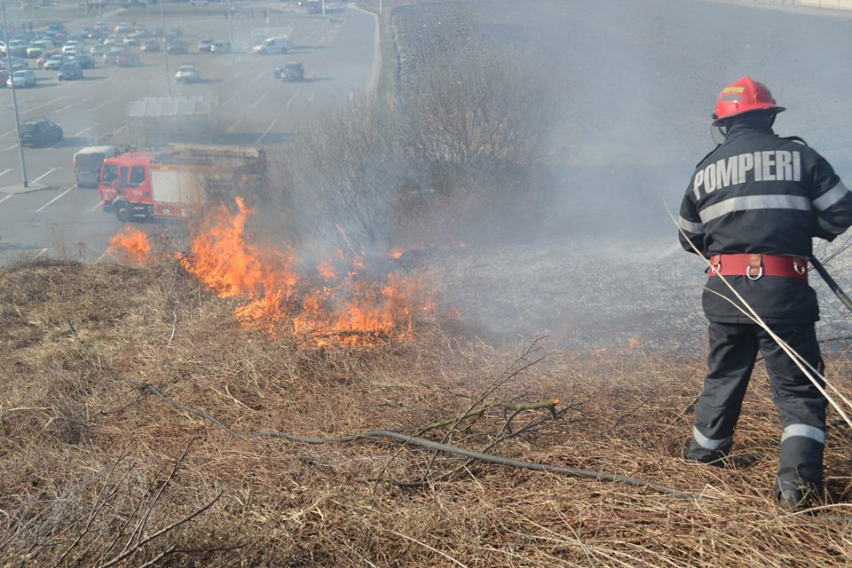 VIDEO – Căprioare speriate în fața flăcărilor. Sute de incendii de vegetație și nicio amendă