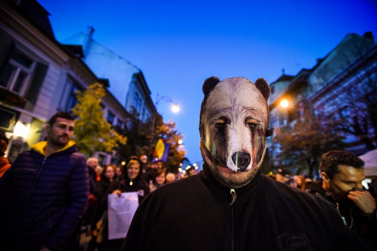 """Ministrul Mediului va emite ordin pentru uciderea a peste 140 de urși """"indiferent de câte mitinguri vor fi"""""""
