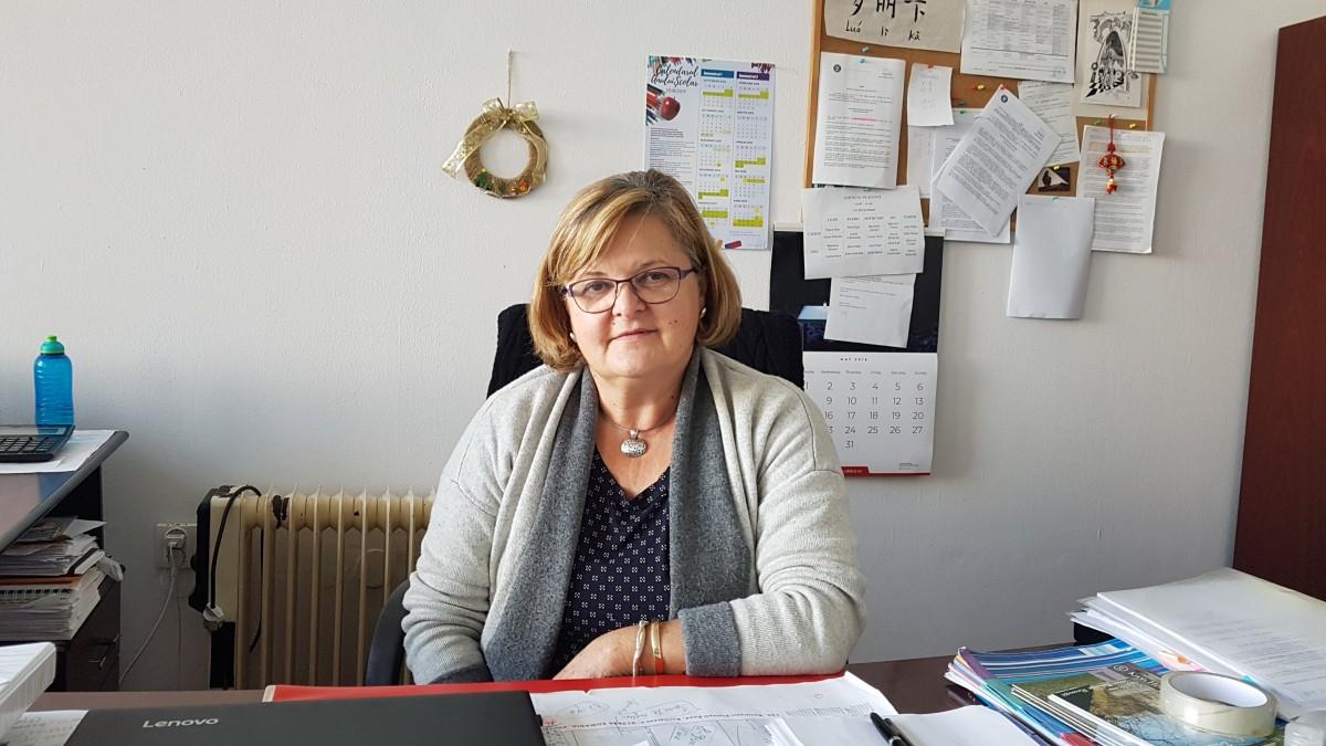 Interviu cu directorul de la Pedagogic:Elevii cei mai buni aleg Lazărul sau Goga