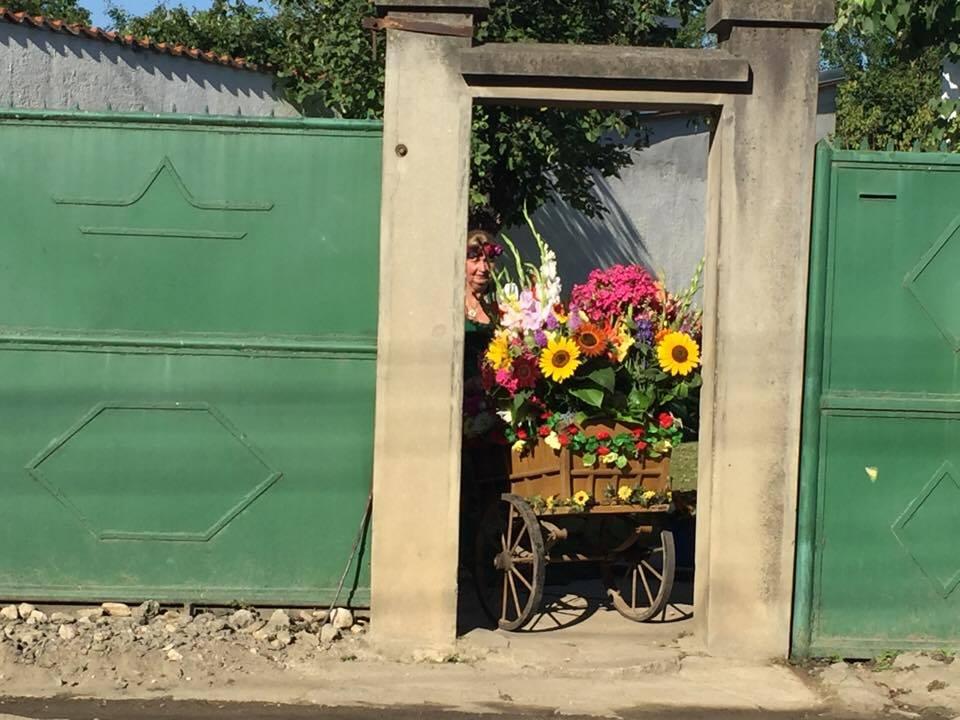 VIDEO Înapoi la rădăcini. Săsoaica întoarsă acasă ca să vândă flori, exact ca mama sa